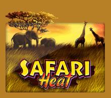 slotxo สล็อต XO Safari Heat